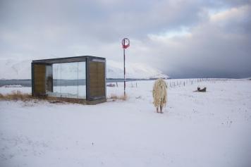 Gamli Skoli. Hrisey, Iceland.