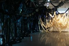 Primavera in Sospeso, Jennie Suddick and Anna Rose, 2018, Robert McLaughlin Gallery, Canada