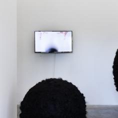 Anna M. Rose — Homo Bulla. Lottozero — Museion